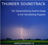 Thunder Sound Track for Dogs