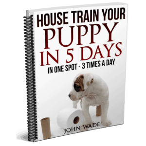 House Train Your Puppy in 5 Days - One Spot 3X/day.