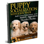 Puppy Socialization with John Wade
