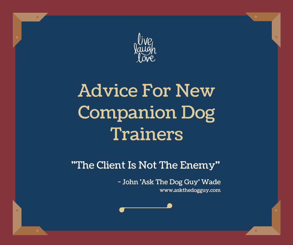 advice for new dog trainers the client isn't the enemy