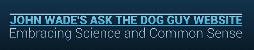 ASK THE DOG GUY header image